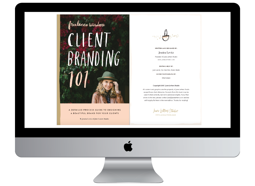 Freelance Wisdom: Client Branding 101 eBook Recommendation from Delighted Creative Co.
