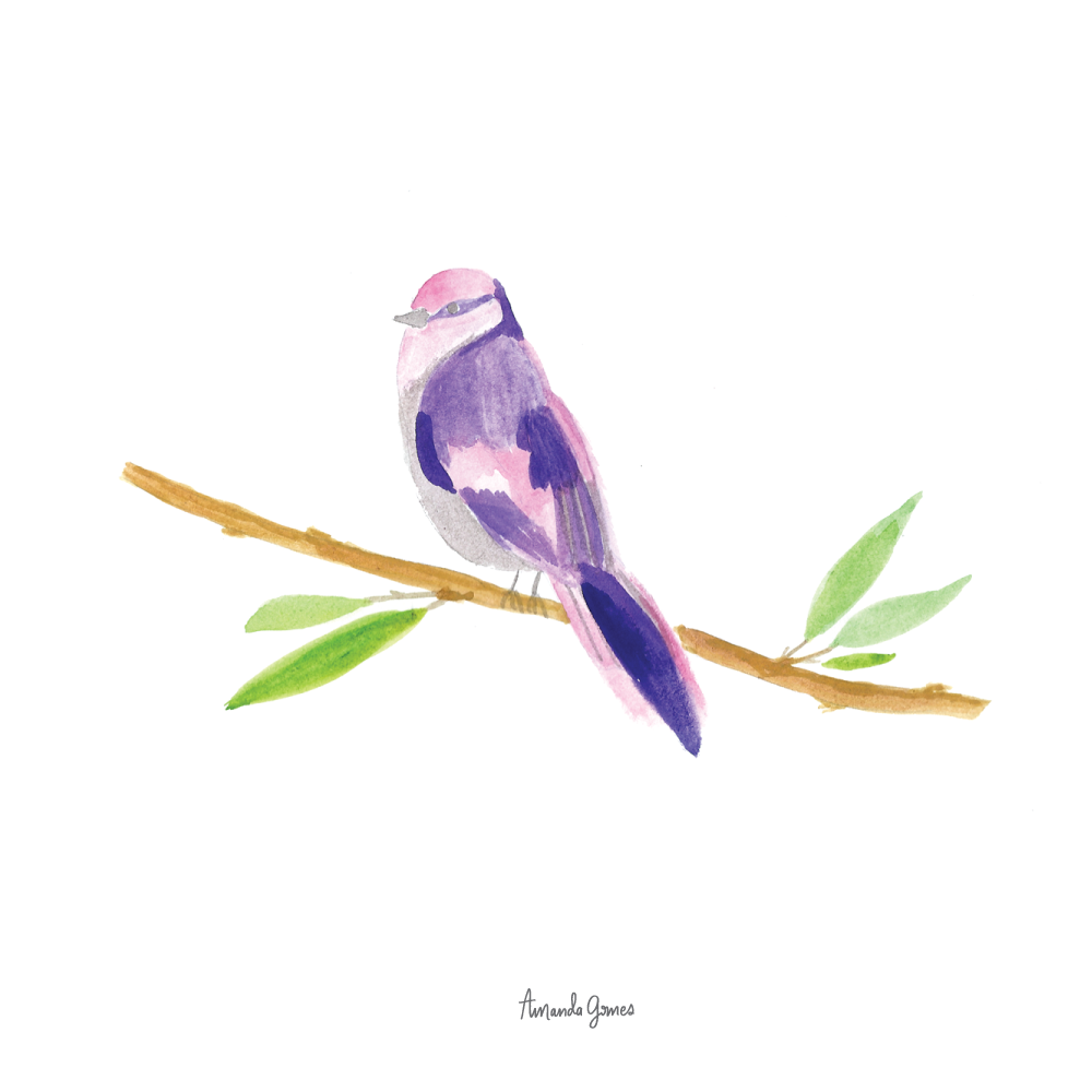 Purple bird illustration by Amanda Gomes • Delighted Creative Co.
