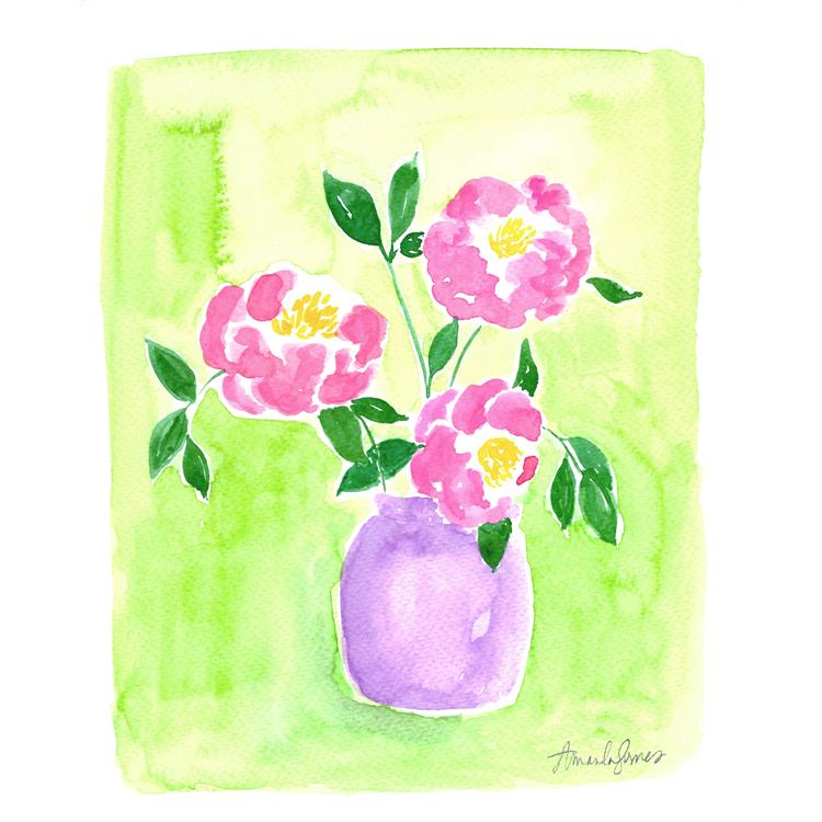 Camellia Plant Illustration ©Amanda Gomes • delightedco.com