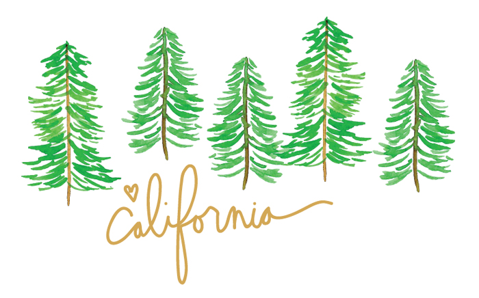 Amanda Gomes • California • Lettering and Watercolor • amandagomes.com
