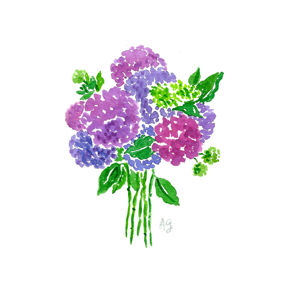 Watercolor Hydrangea Bouquet Arrangement Illustration by Amanda Gomes artist • amandagomes.com