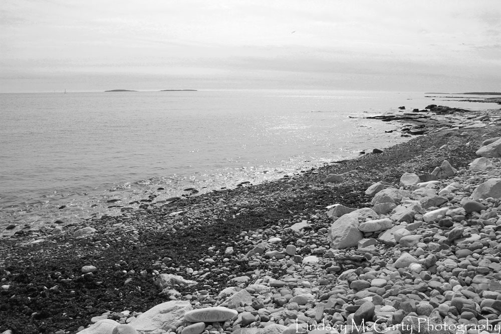 2014_Maine_psewl_1628.jpg