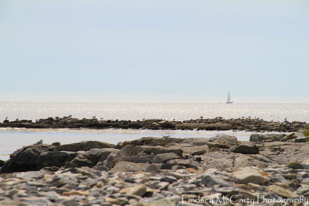 2014_Maine_psewl_1631.jpg