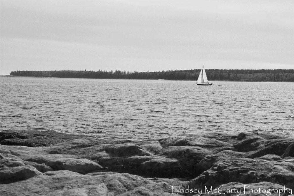 2014_Maine_psewl_1645.jpg