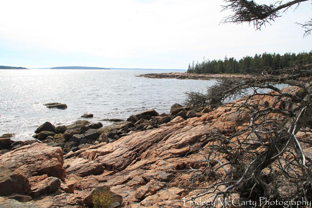 2014_Maine_psewl_1649.jpg