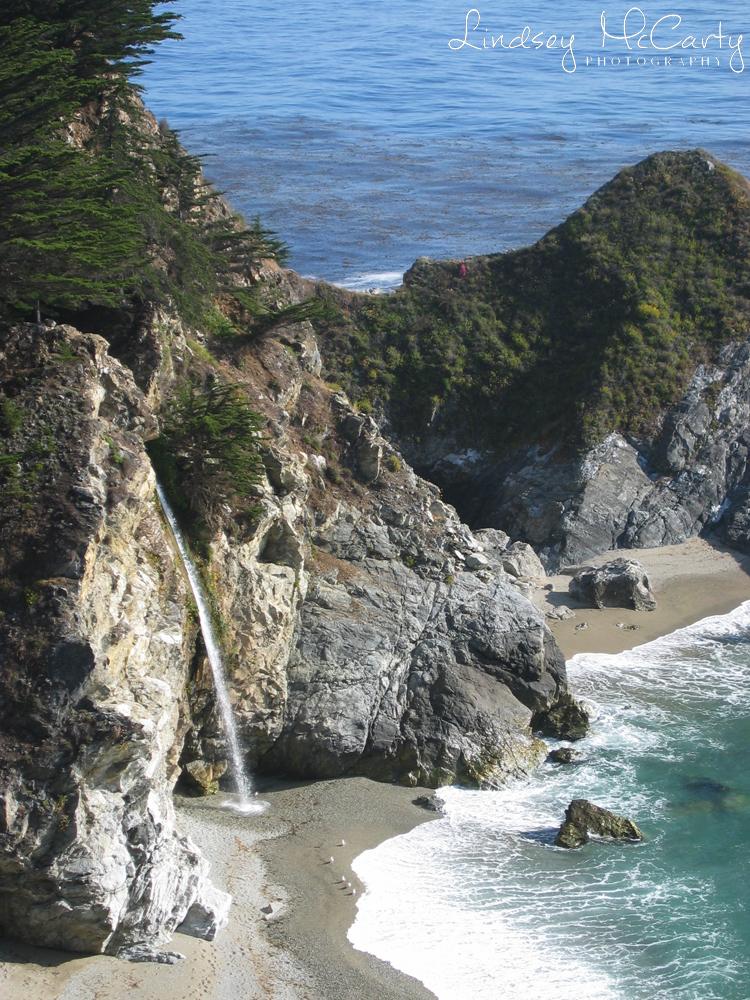 California_psewl_124_2407.jpg
