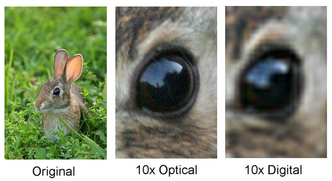 digital_zoom_vs_optical_zoom.jpg