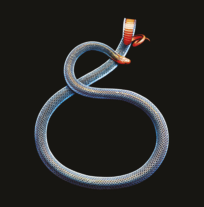 Mark Laita: Year of the Snake