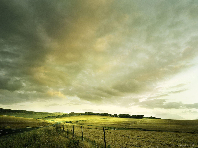 2_Landscape_MichaelSchnabel-1450.jpg