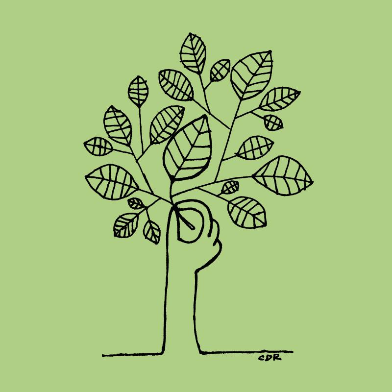 6b. Tree-Christopher_David_Ryan.jpg