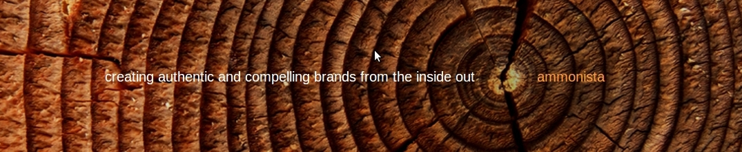 ammonista: creating authentic and compelling brands from the inside out