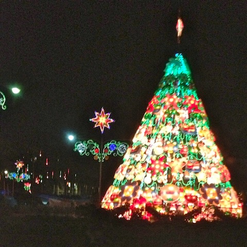 Every town, big and small, had a Christmas tree in the town square. This one was in La Union.