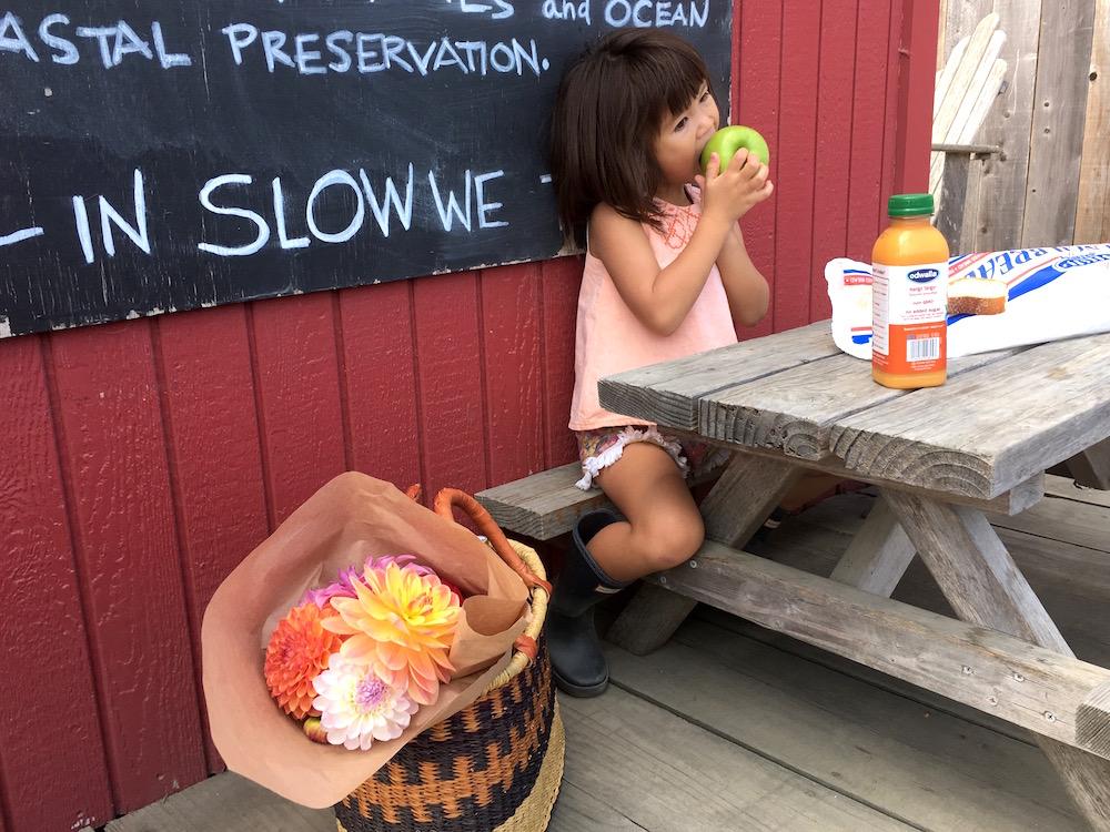 Sugarcane Life  at Pescadero