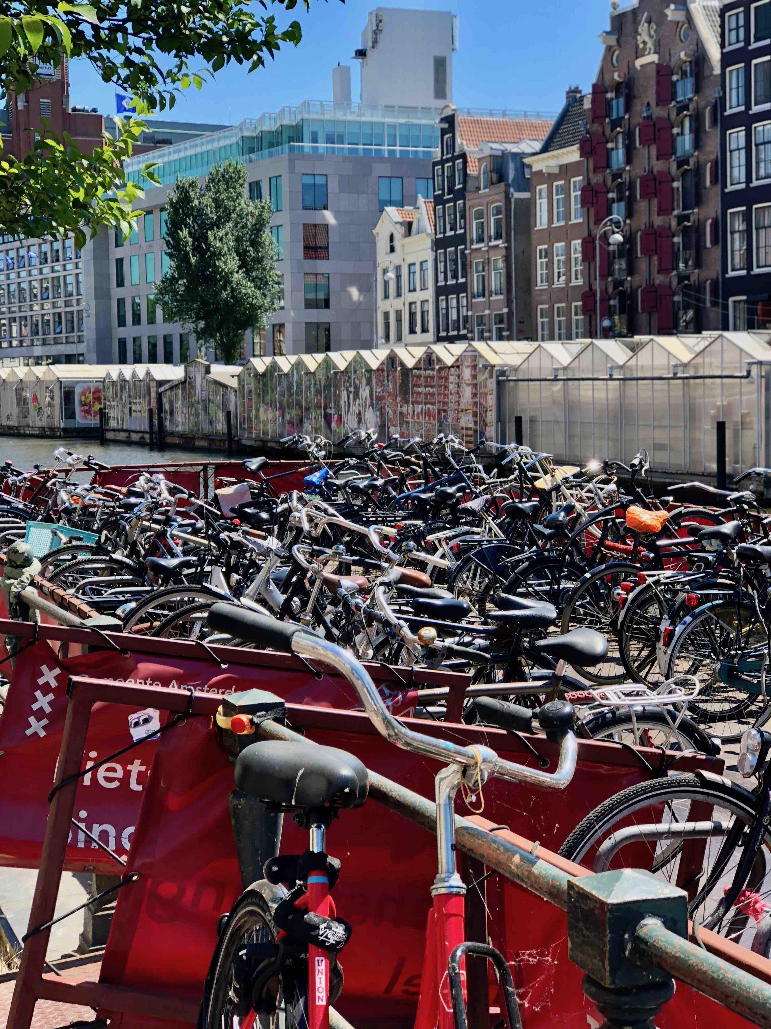 800,000 Bikes