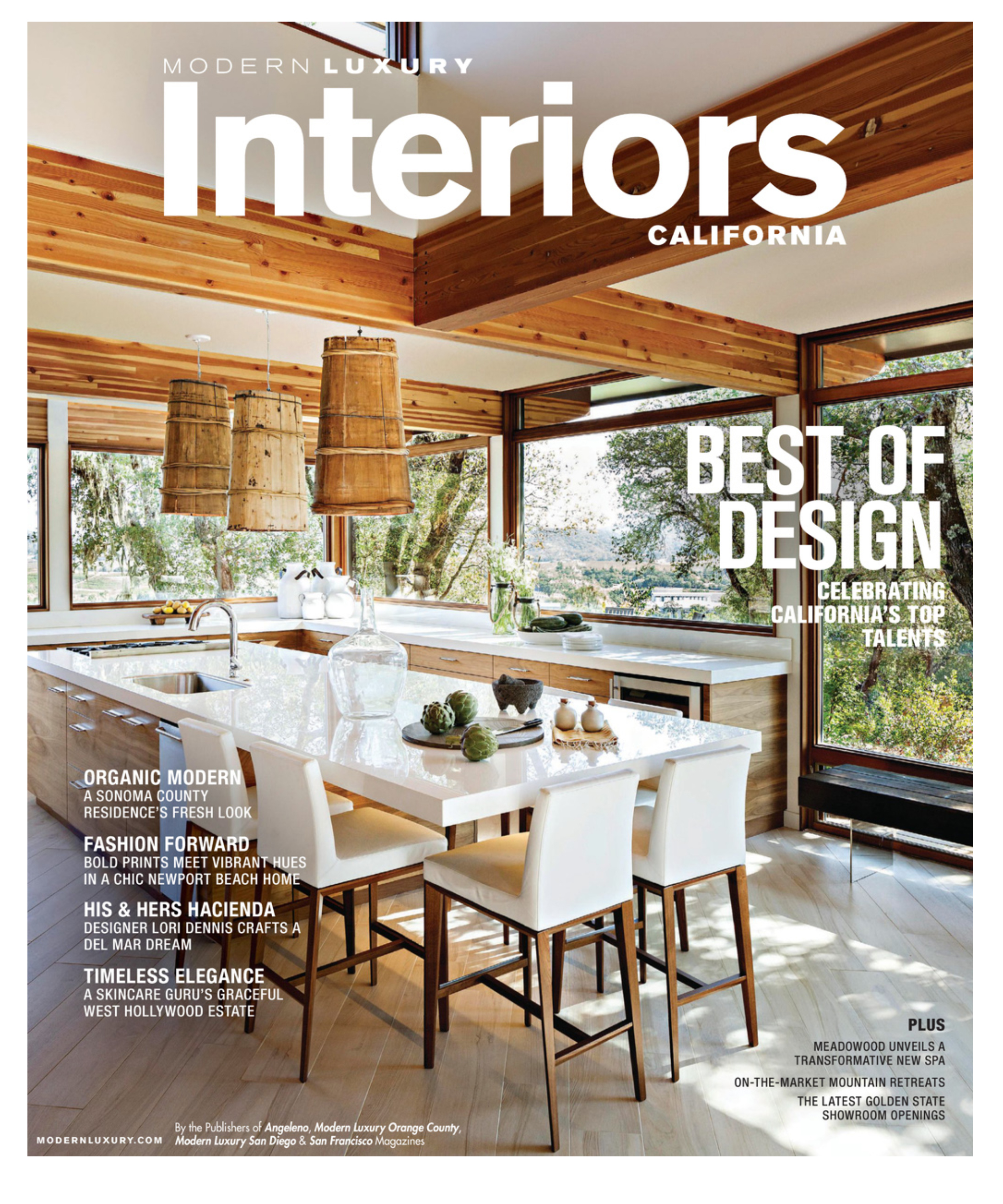 Modern Luxury Interiors Winter/Cover