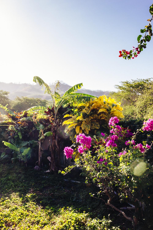 H_Ospina_Nicaragua__5958024.jpg