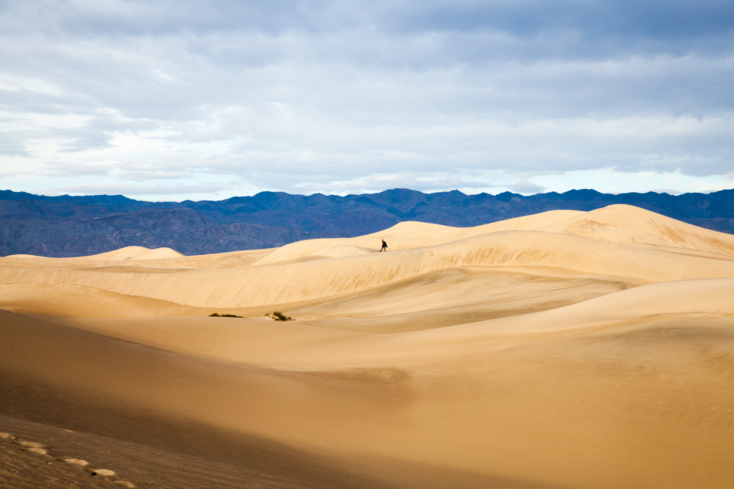 Helynn_Ospina_Travel_Death_Valley_California_01605-5.jpg