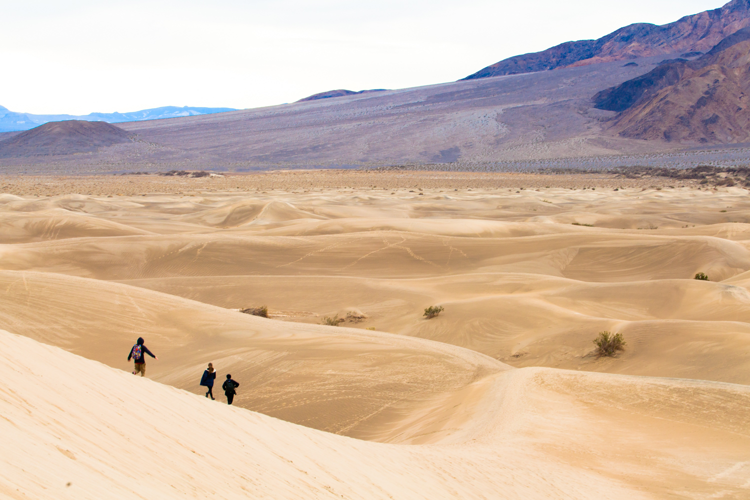Helynn_Ospina_Travel_Death_Valley_California_01609-55.jpg