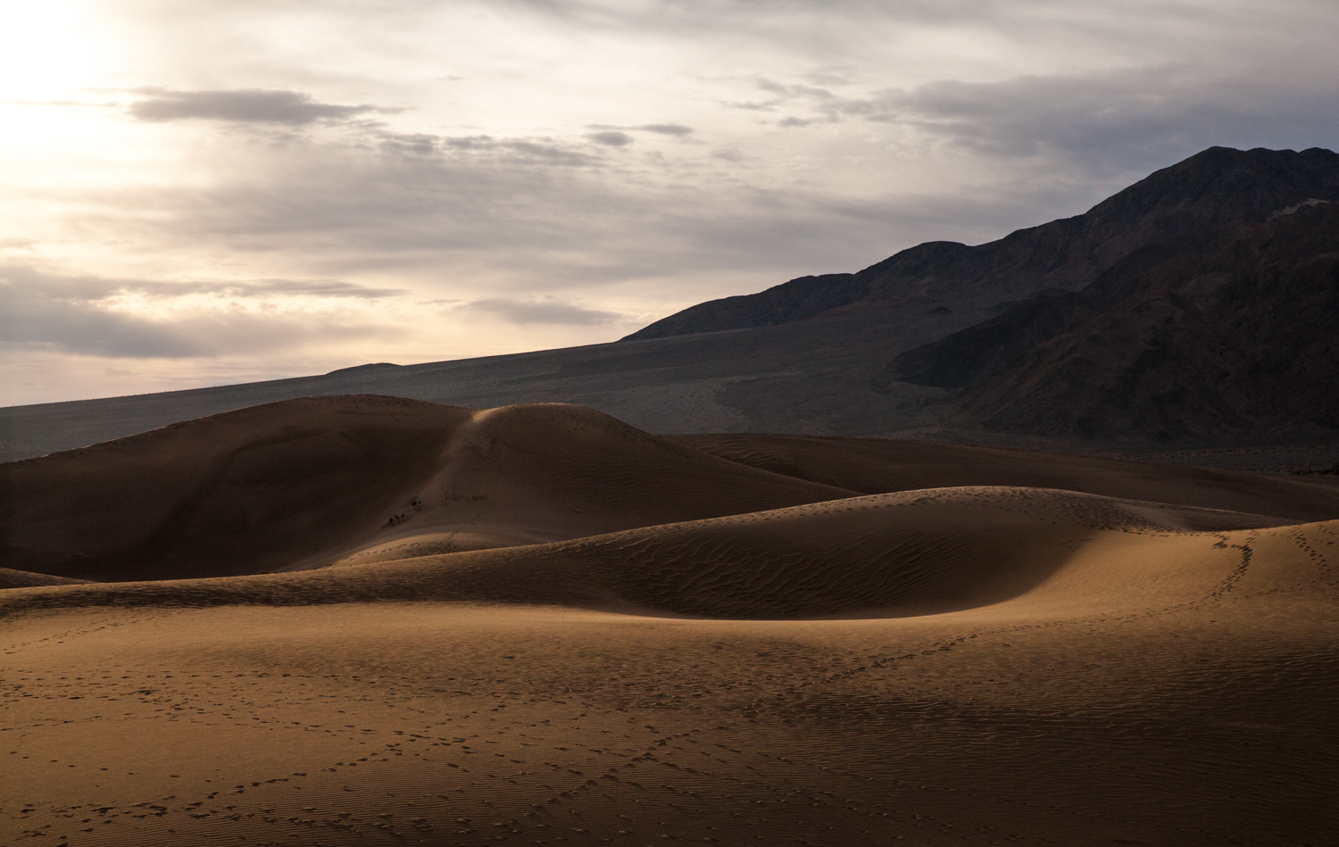 Helynn_Ospina_Travel_Death_Valley_California_01648-29.jpg