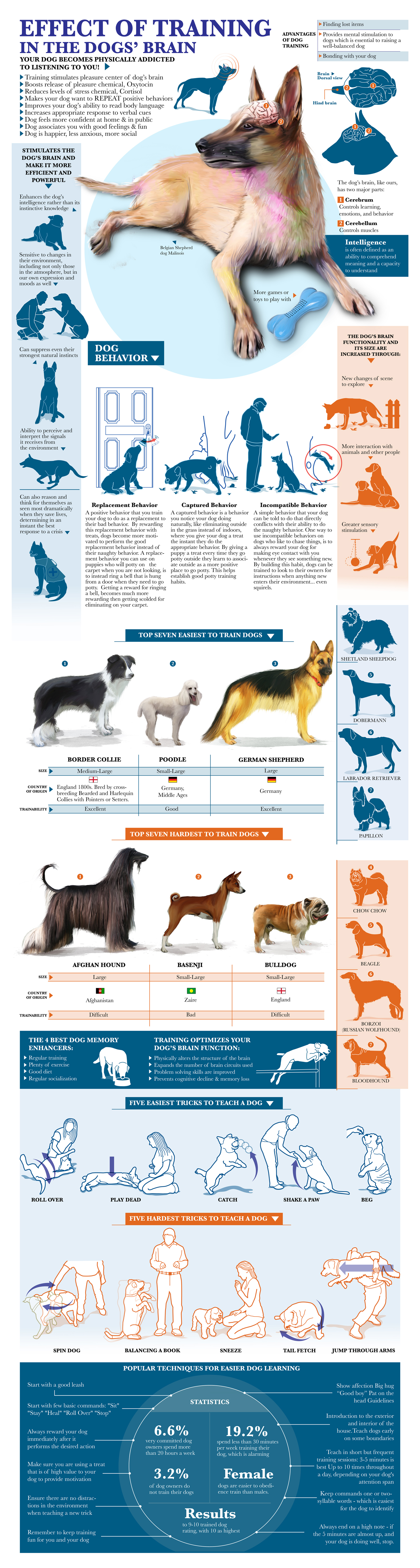 effect-of-training-in-the-dog-brain primal canine dog training.jpg