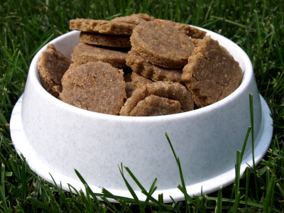 primal canine dog treats