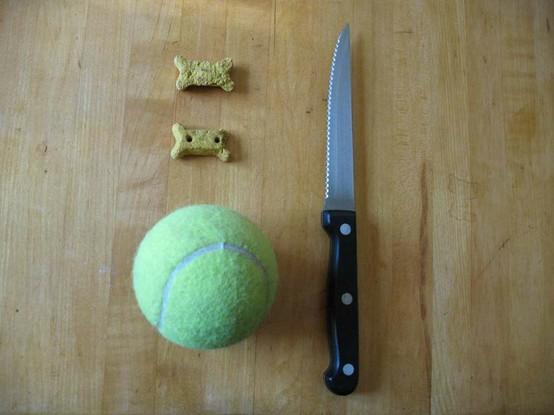 primal canine dog training puzzle toy