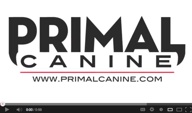 primal canine dog training youtube