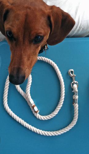designer rope leash primal canine dog training