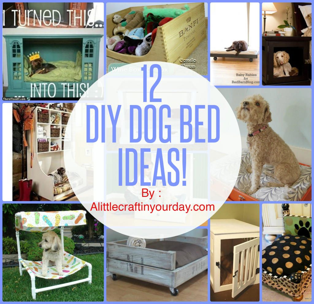 diy dog beds primal canine bay area dog training