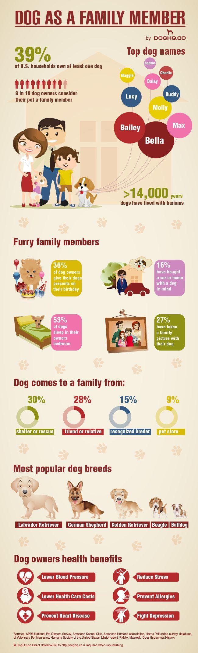 Dog As A Family Member