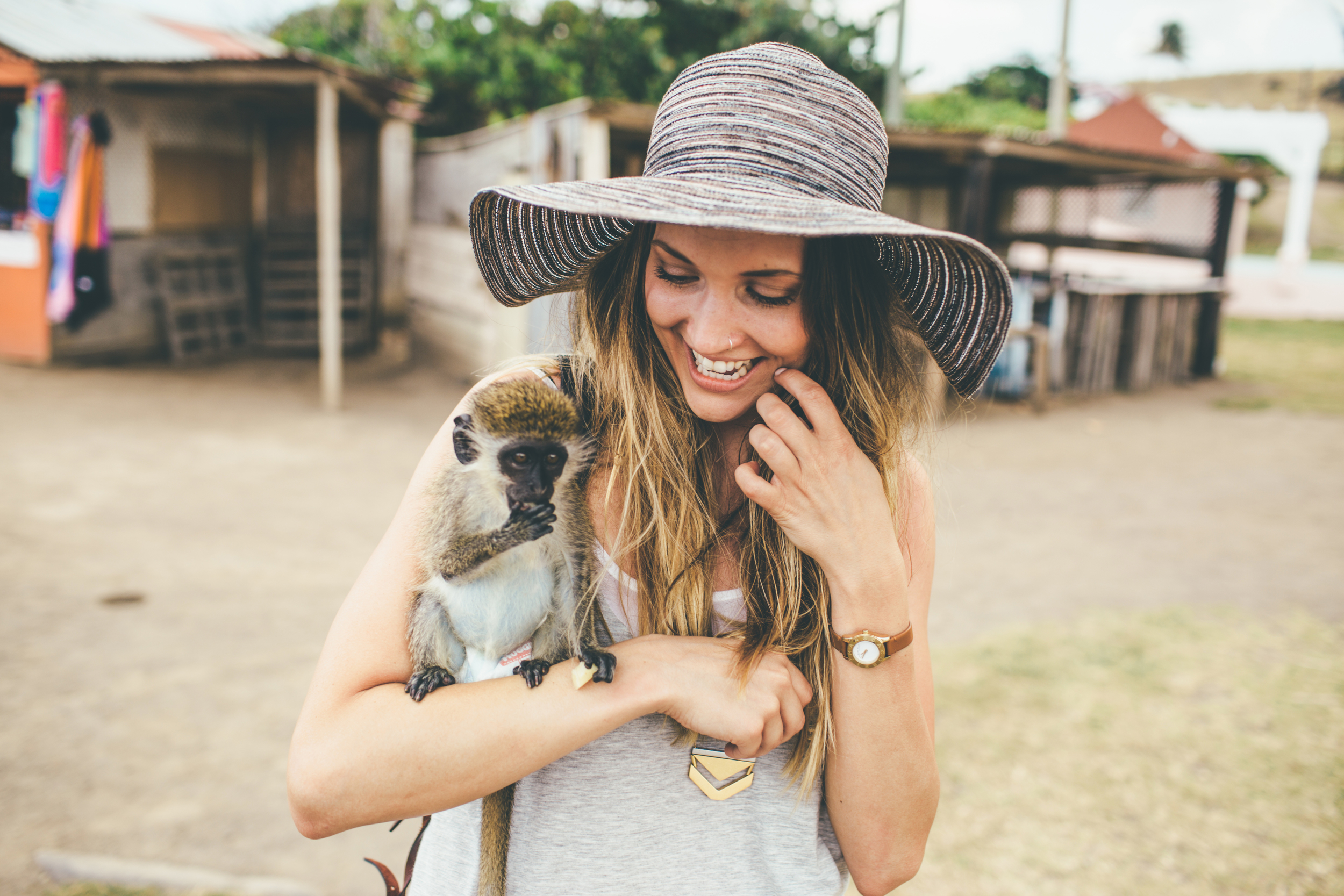 St Kitts: First time I had ever held a monkey. And it was a baby.