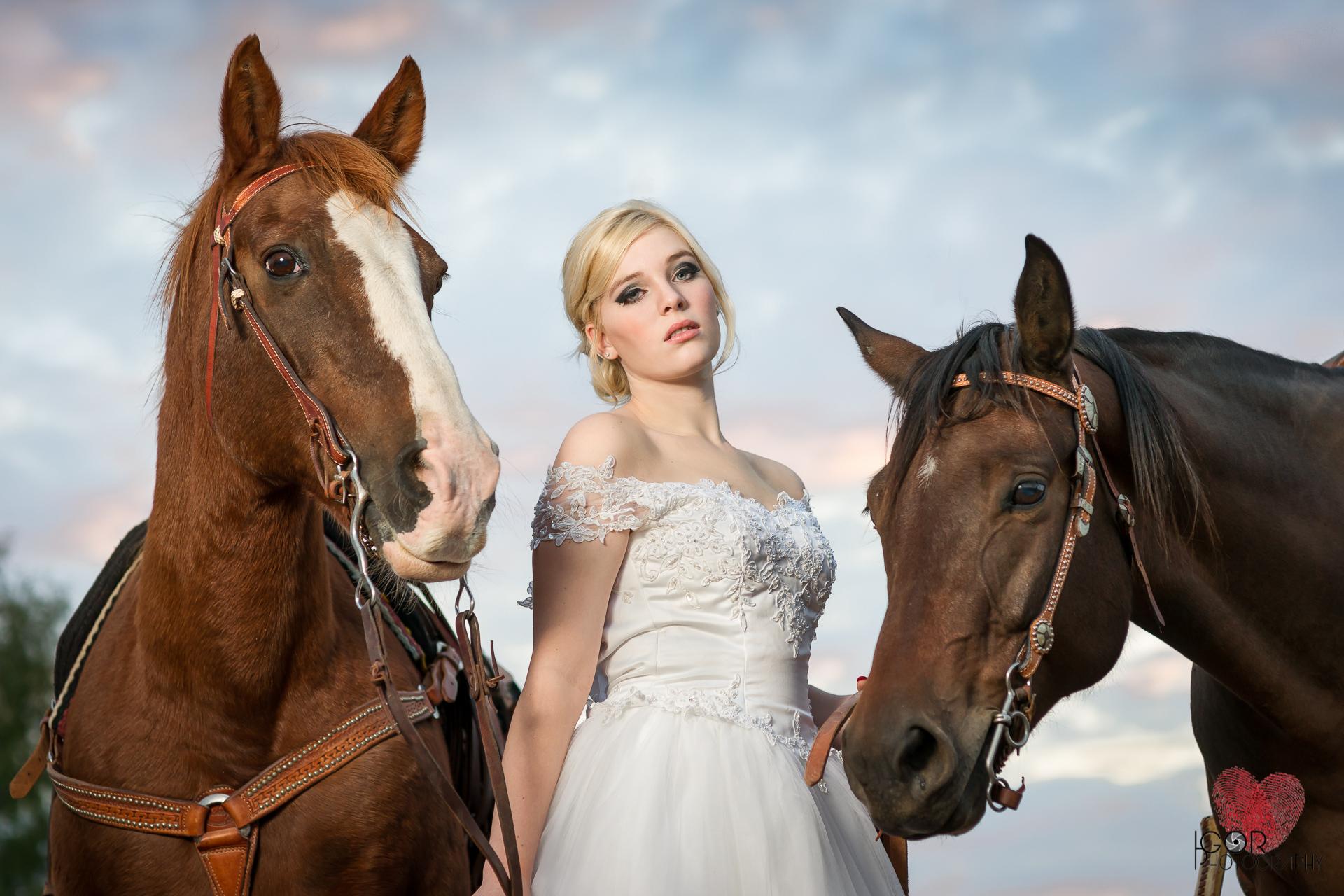 Kate-Colby-Horse-1-1.jpg