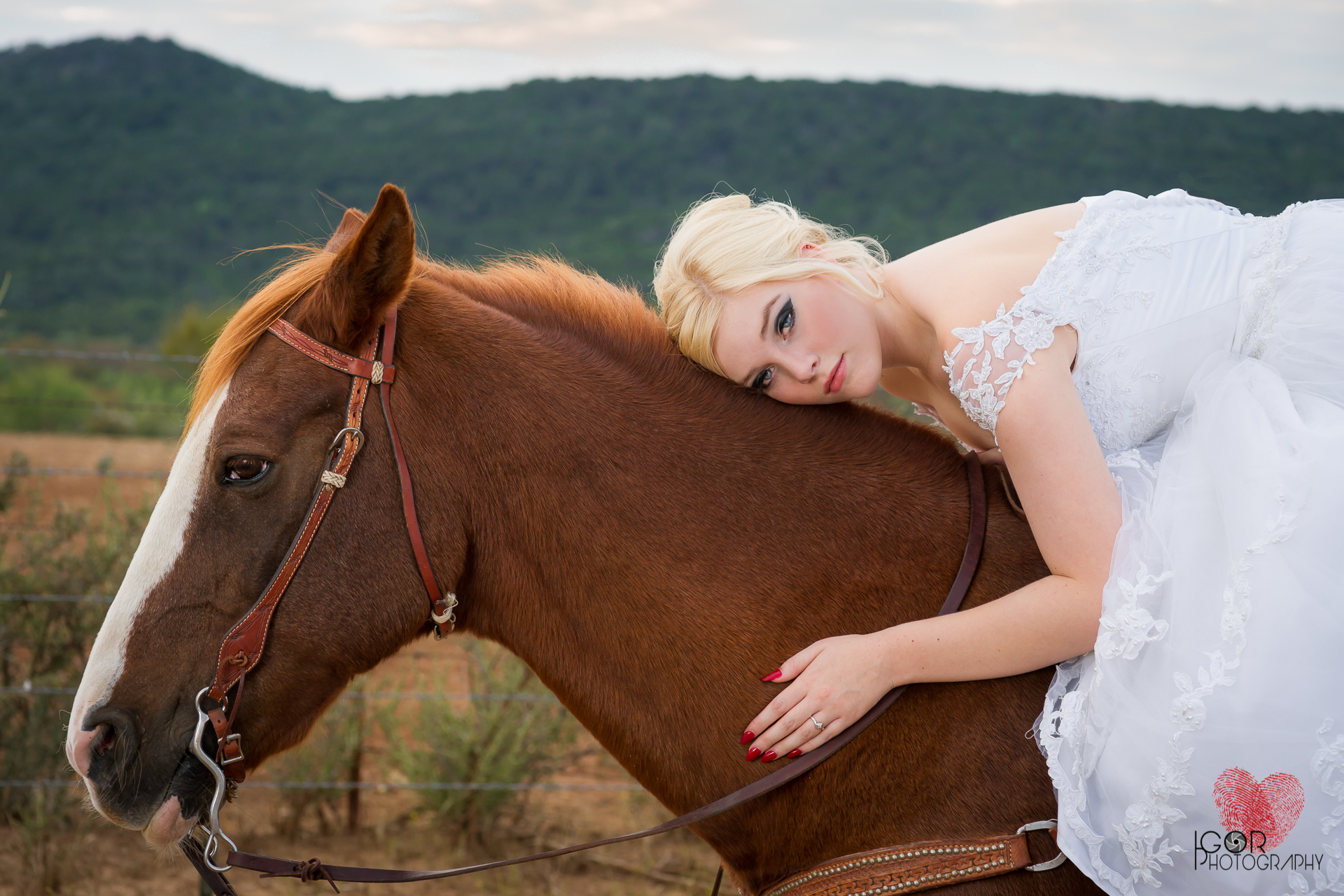 Kate-Colby-Horse-11.jpg