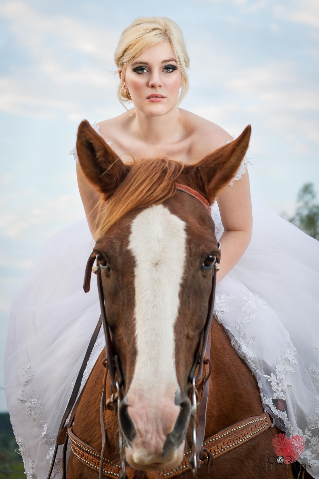 Kate-Colby-Horse-15.jpg
