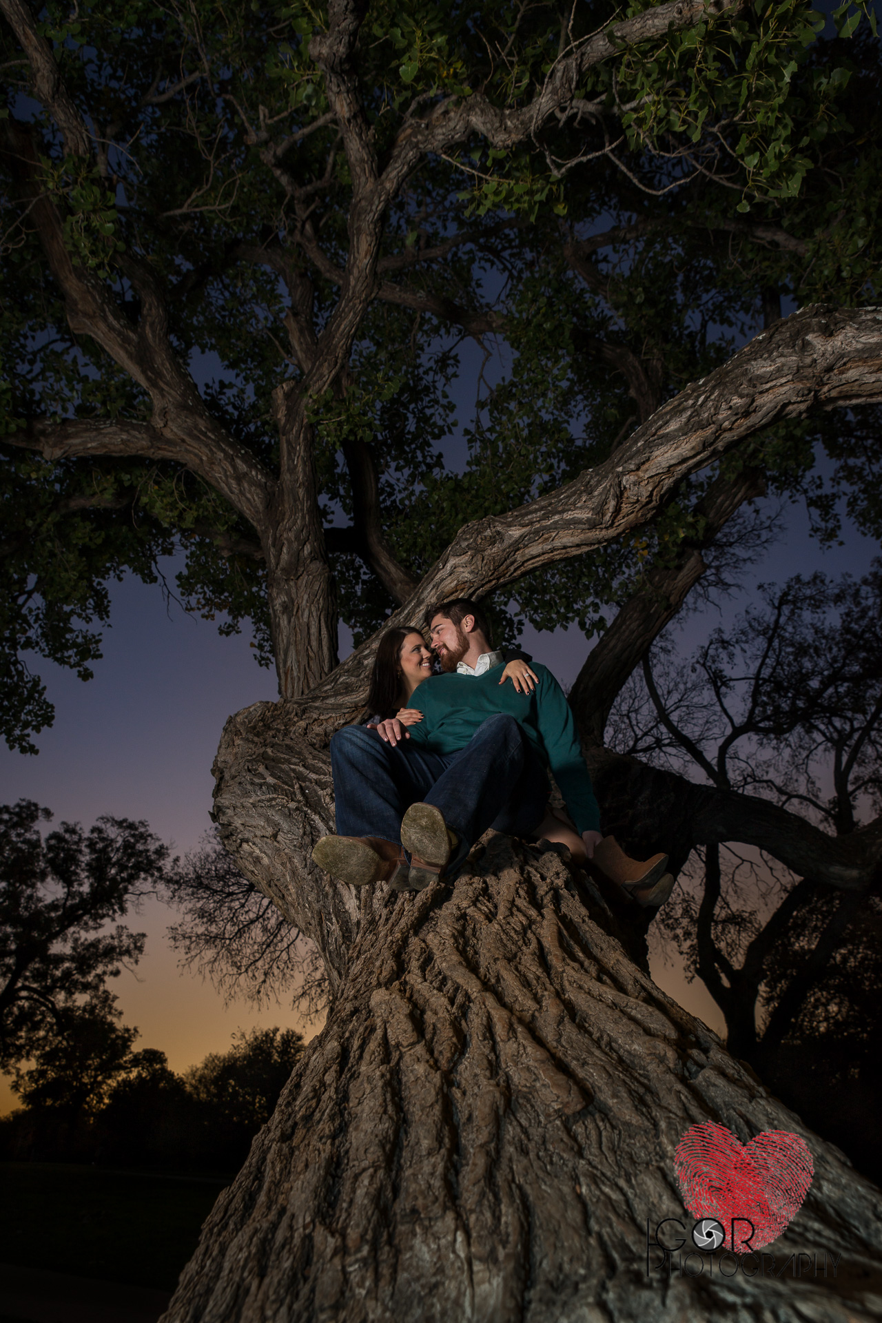 Climbing tree engagement photo