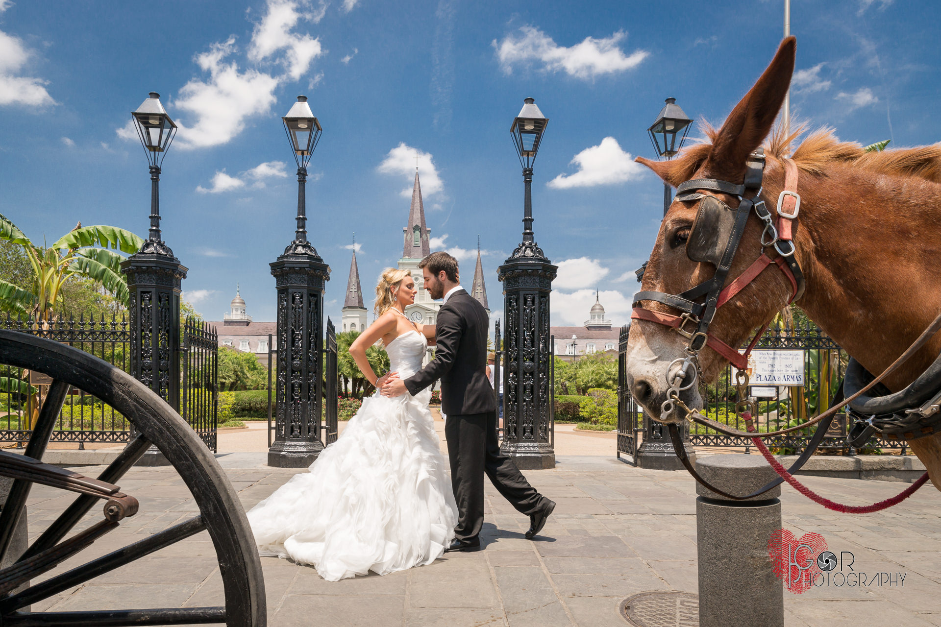 Jackson Square wedding photosJac
