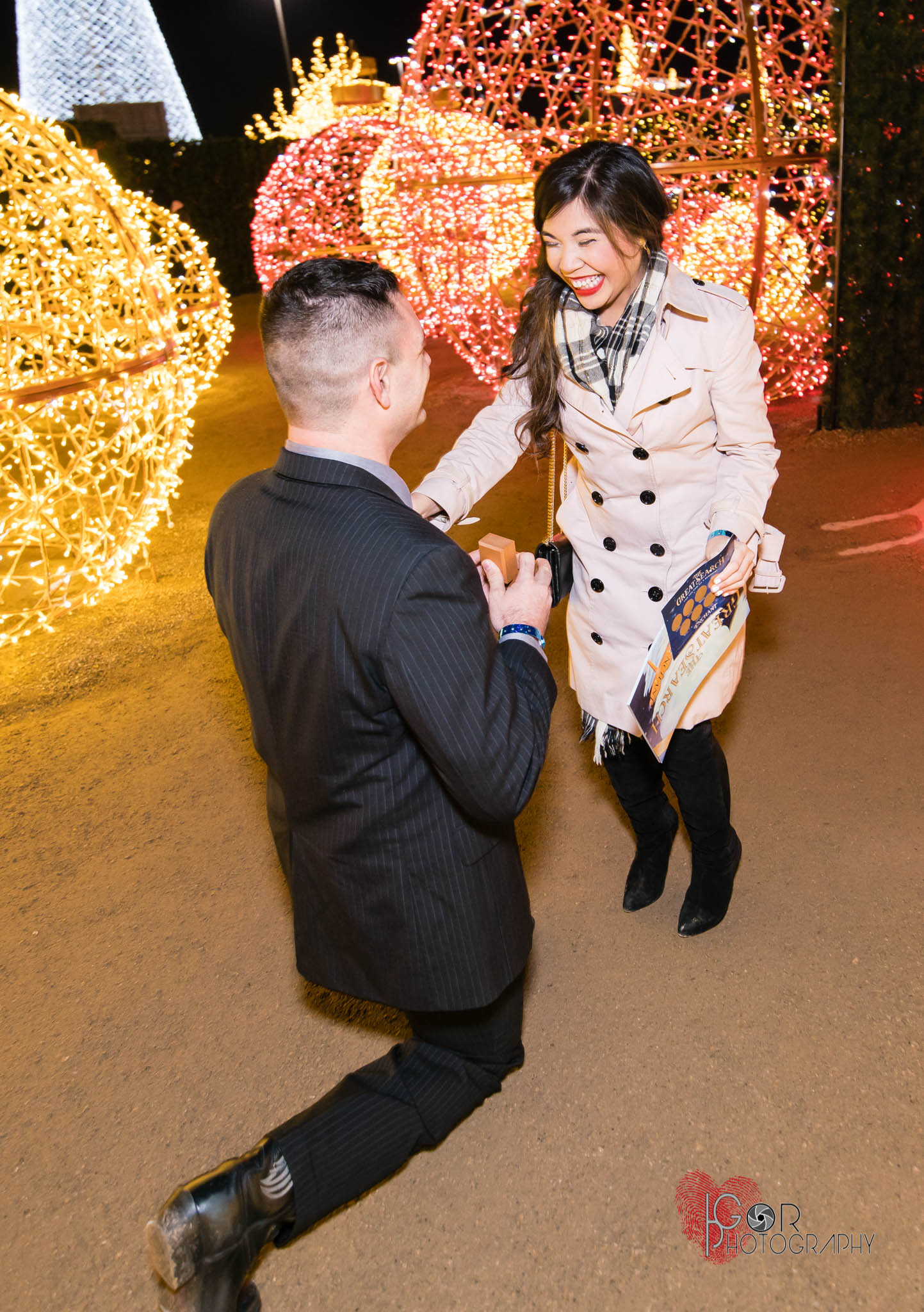 The proposal moment:Did she say yes?, It's pretty safe to say that she did judging by her smile from ear to ear!