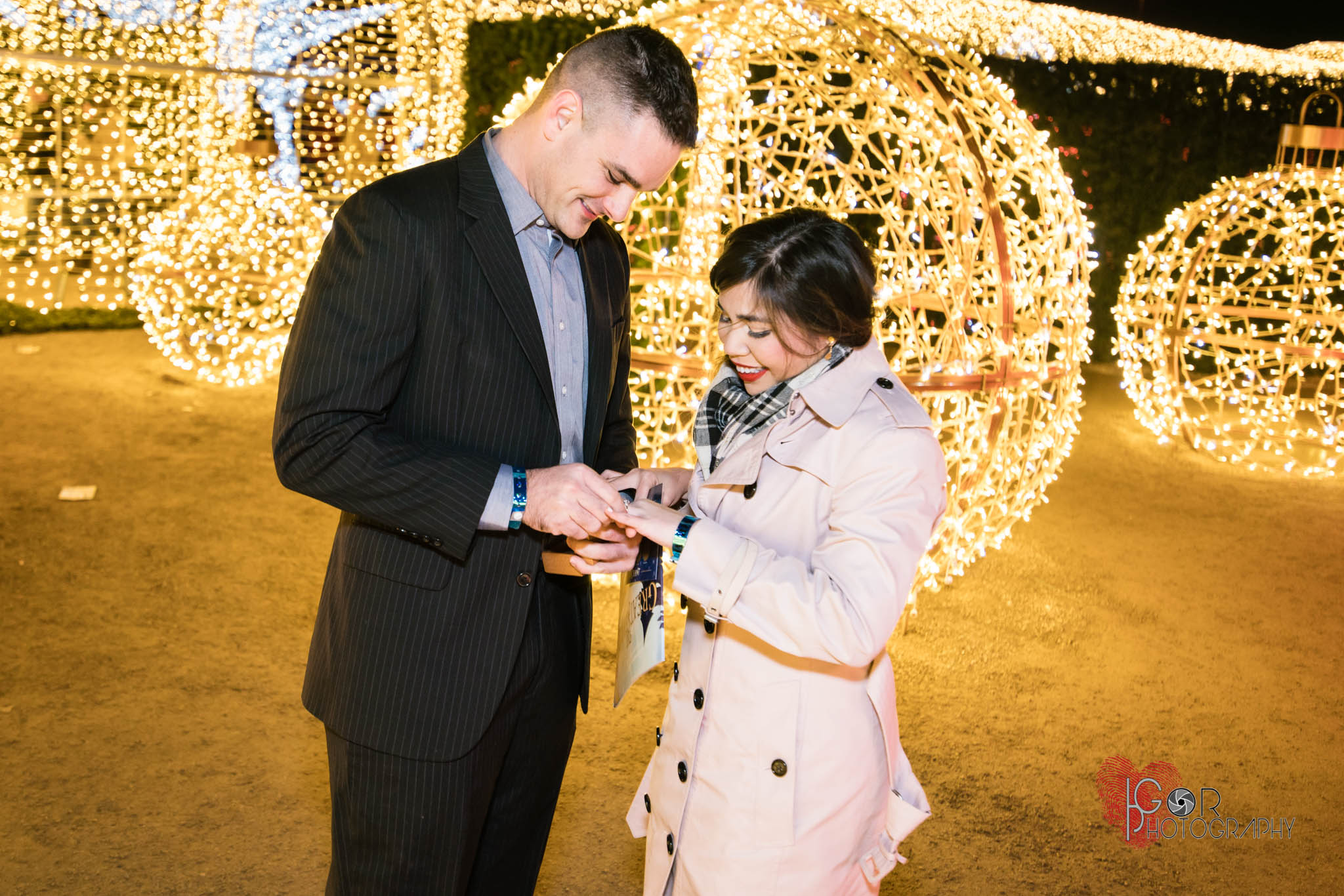 Christmas proposal photos