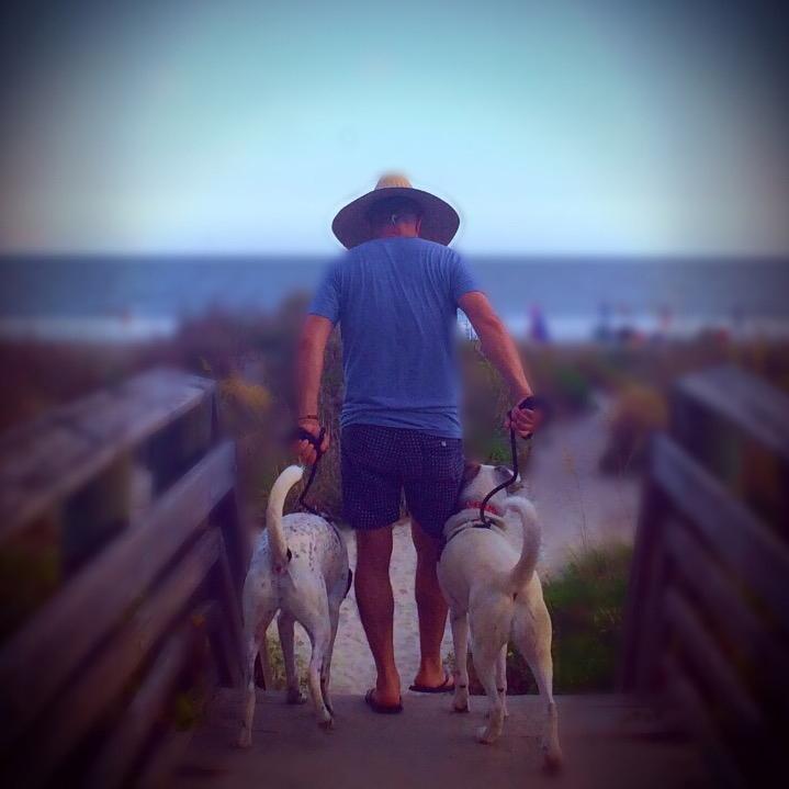 Dogs_at_Folly.JPG