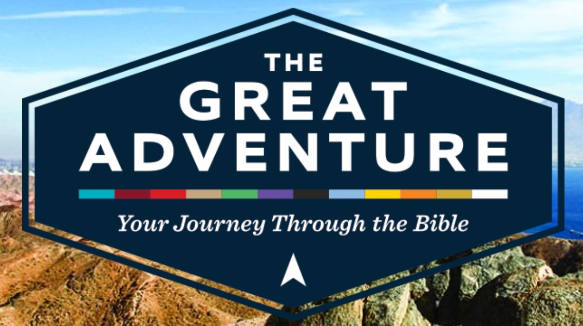 Bible Study Programs