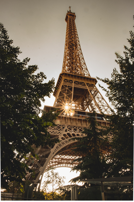 The beautiful Eiffel Tower