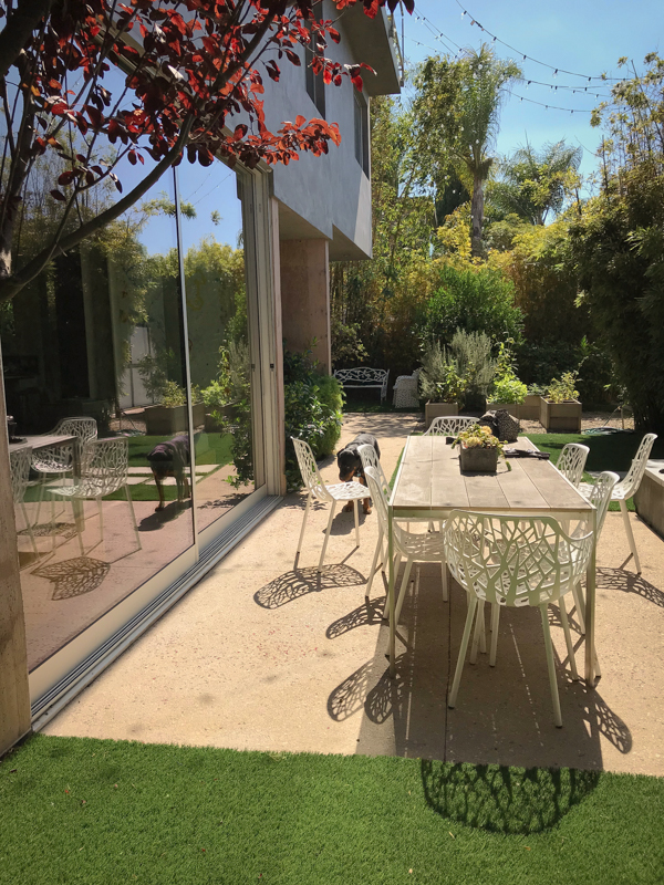 Welcome to Julia's house. This is the front yard where we would relax in-between our trips. It was lovely to sit and enjoy the sun in such a lush and private setting. Do you see Bae there? That is Julia's dog…Such a good girl and she loves being outside.