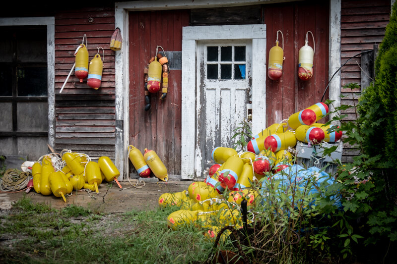 The backyard of a lobsterman. So many different colored buoys in each back yard…A working town.