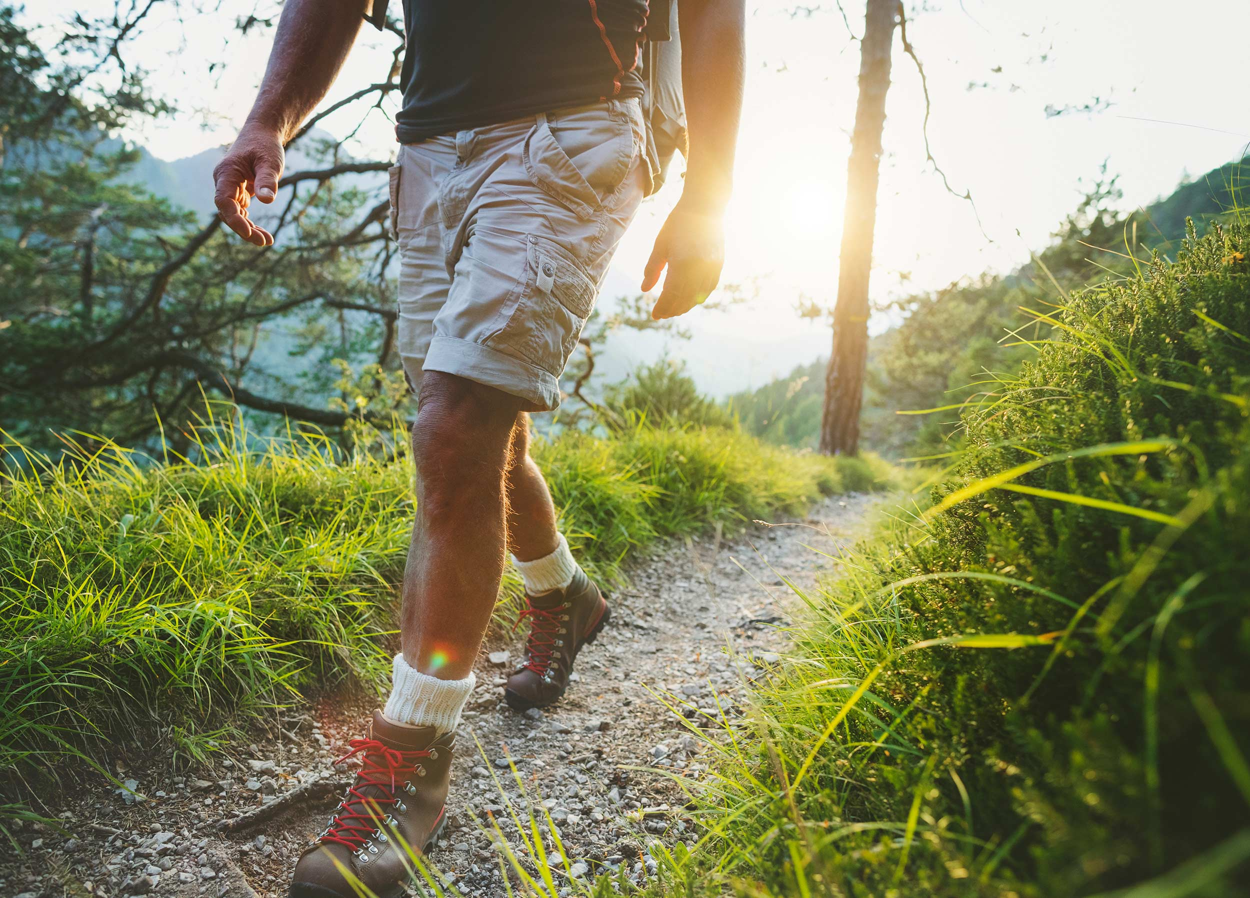Oaks Bottom offers great hiking within Sellwood.   Read More  .