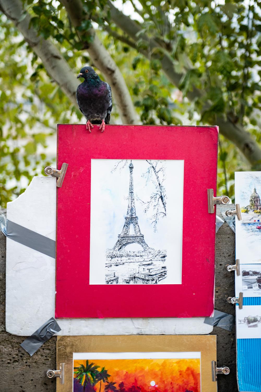 181004_Paris-868.jpg