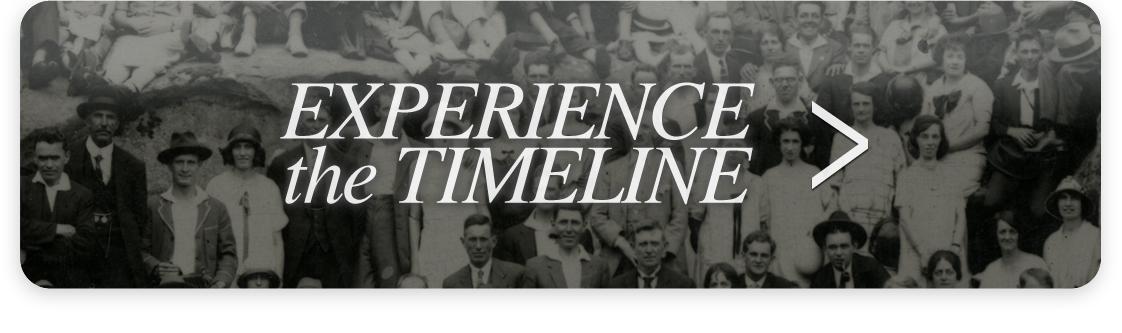 TimelineBUTTON.jpg