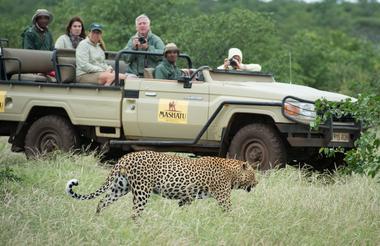 Viewing_of_Leopard_-_OE.jpg