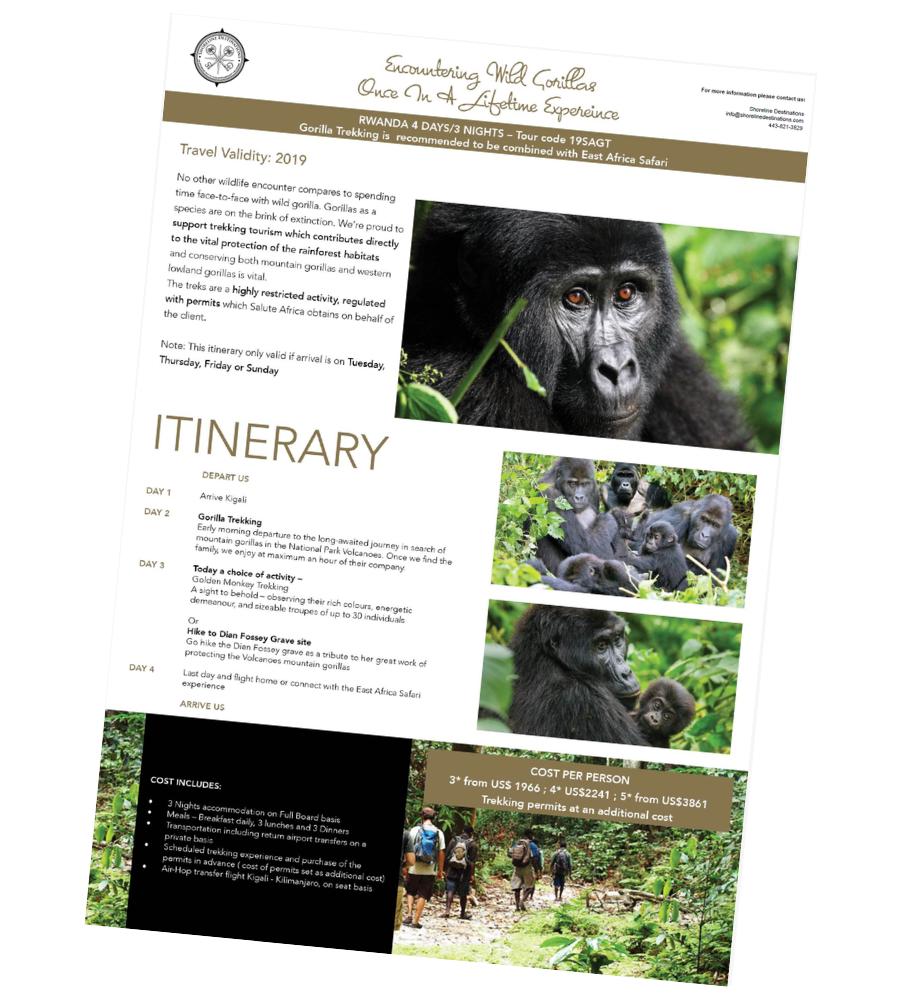 Encountering Wild Gorillas Tour