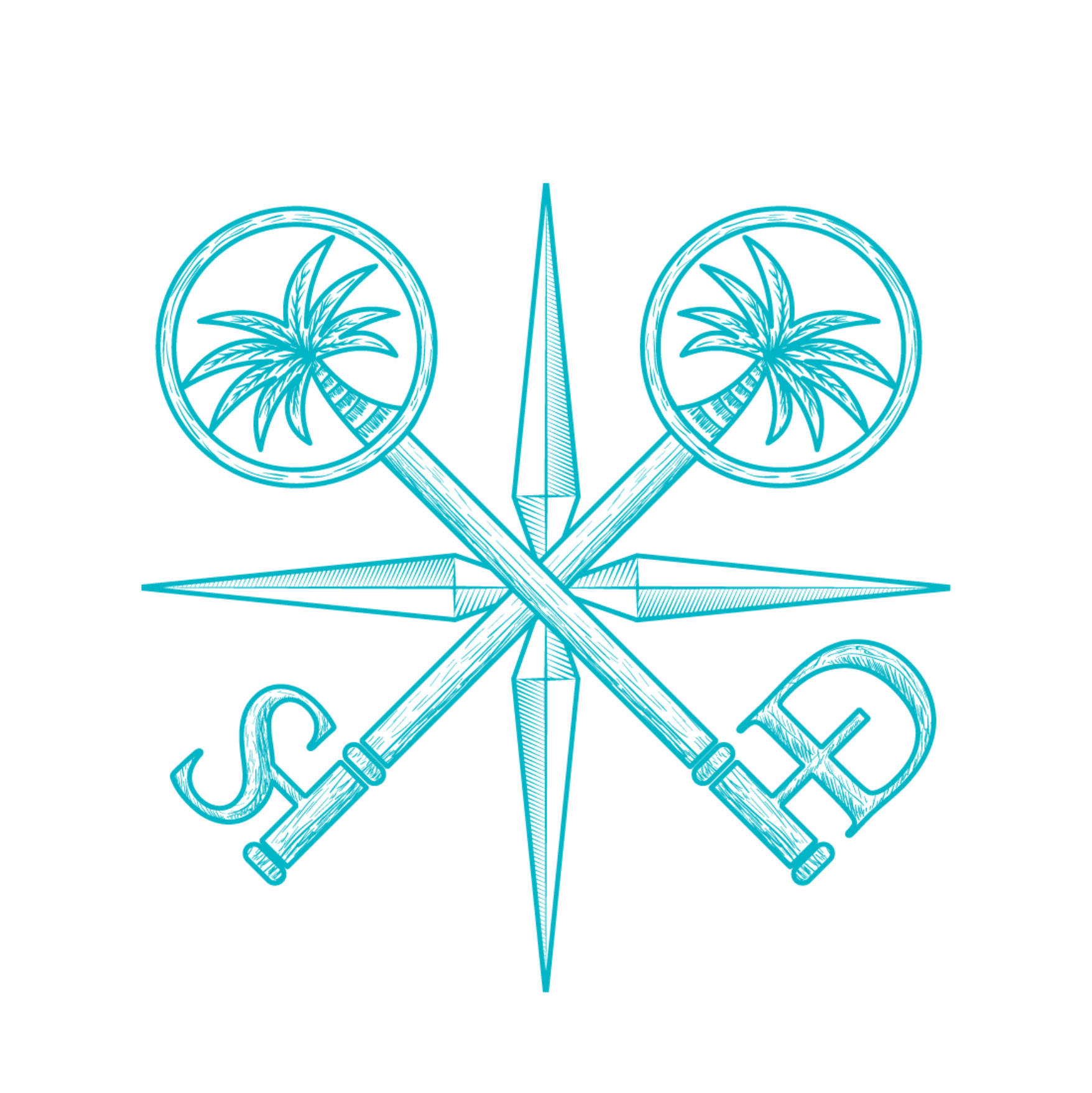 SD Cross Teal.png