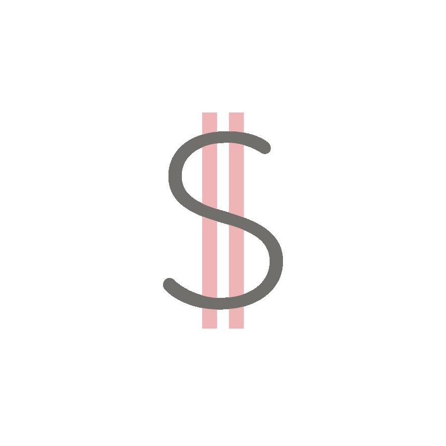Cash Symbol Icon
